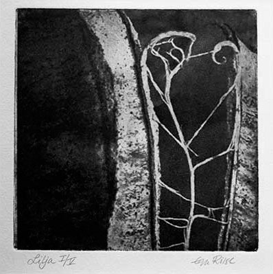 Lilja - fotopolymer Eva Riise